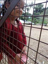 shyama- himachal school girl: by mariageorge, Views[193]