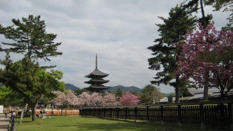 Pagoda and gardens in Nara