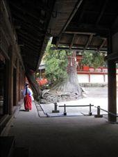 XXX Temple, Nara: by markr_mcmahon, Views[588]