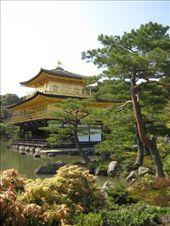 Kinkakuji (Golden Pavilion) Temple, Kyoto: by markr_mcmahon, Views[697]