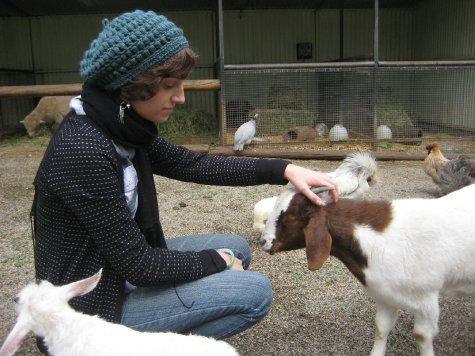 Tania scratching a goat