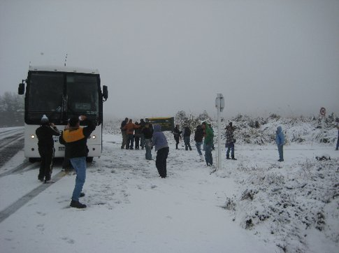 The Magic Bus has a snowball fight!