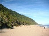The Heaphy Track: by markr_mcmahon, Views[108]