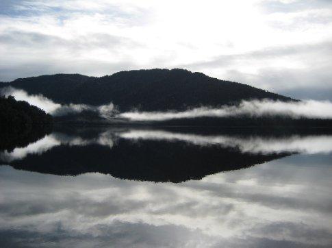 Cool shapes at Lake Paringa