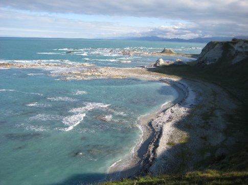 Looking down onto a huge seal colony near Kaikoura