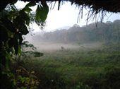 Periyar Wildlife Sanctuary, Kumily, Kerala: by markr_mcmahon, Views[3621]