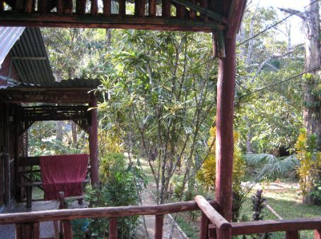 View from the porch of my log cabin, Kuala Tahan
