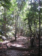 Taman Negara National Park: by markr_mcmahon, Views[412]