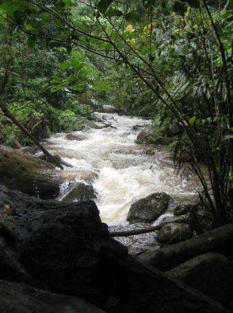 Waterfall, Cameron Highlands