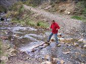 vendy crossing the stream: by matsmith, Views[236]