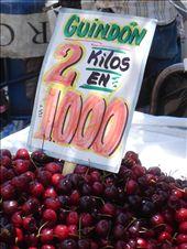 Pas cheres les cerises: 1€50 les 2 kg de cerises! miam!: by maud-pierre, Views[180]