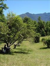 le lieu du picnic...sympa: by maud-pierre, Views[191]