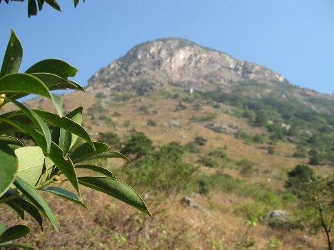 Almost at the top of Lantau Peak. ;)
