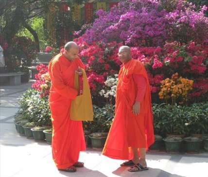 Monks! Hehe. They're adorable! Po Lin Monastery, Lantau Island.