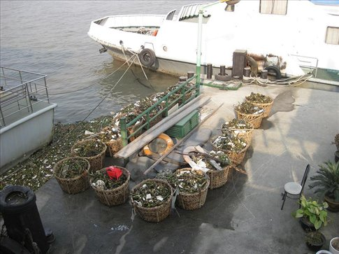 Baskets of debris and rubbish found floating in the Huangpu River.