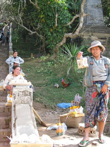 Local women at the entrance to Topra That Chomsi selling tiny birds in cages to leave as offerings for the ancestors and Buddha.