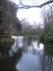 A cold day in St. Stephen's Green.: by mazystar, Views[146]