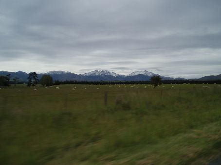 Sheep and mountians, thats all we saw.