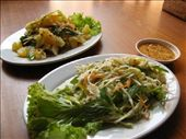 Two Khmer salads: by melissa_k, Views[211]