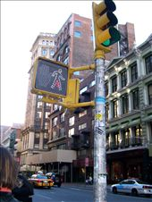 A New York cross walk!: by meowfromkate, Views[209]