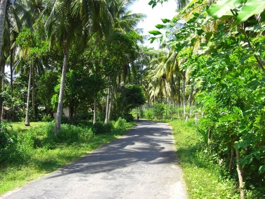 The road west of Kuta