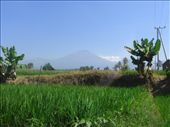 Rinjani from Aikmel: by merantau, Views[234]