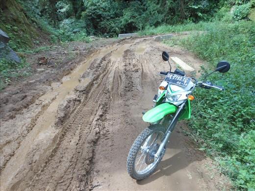 Tepal road