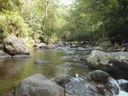 Taman wisata near Semongkat