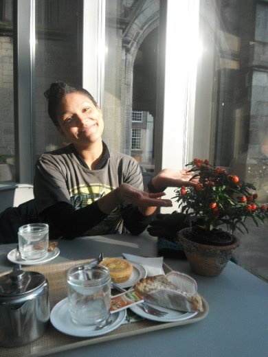 Tea and cake in Utrecht in a lovely church café. And what a pretty plant in the sun