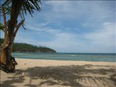 Ao Mae Haad, Koh Phanghan, Thailand  Best Snorkling: by mgee, Views[324]