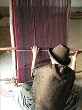 Women who have been practising weaving all their lives suffer from an early onset of arthritis.: by michael_gillen, Views[246]