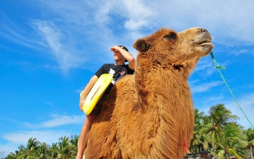 Who would have thought there would be camels in China, and epic surf on top of that.