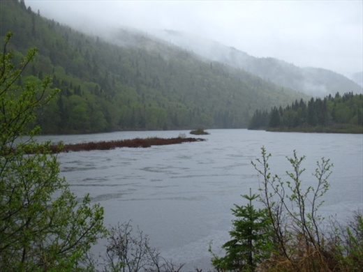 Jacques Cartier National Park, but it's too rainy.