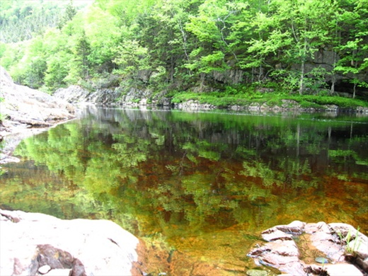 Cheticamp river, pool one, NS