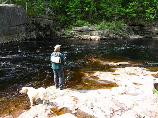 Cheticamp river, pool one, NS Kep and his dog