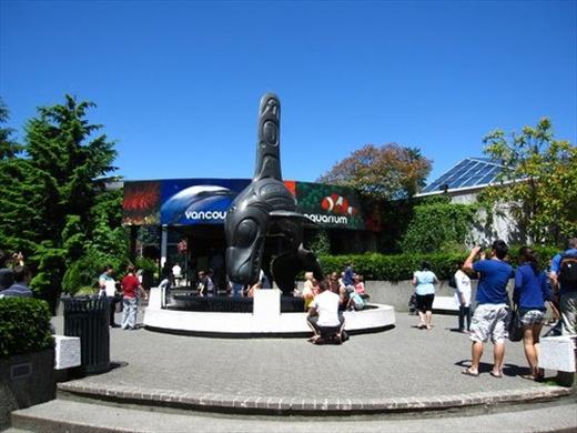 Shots from the amazing Vancouver Acquarium!