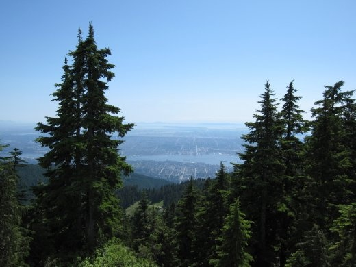Greater Vancouver from the top.