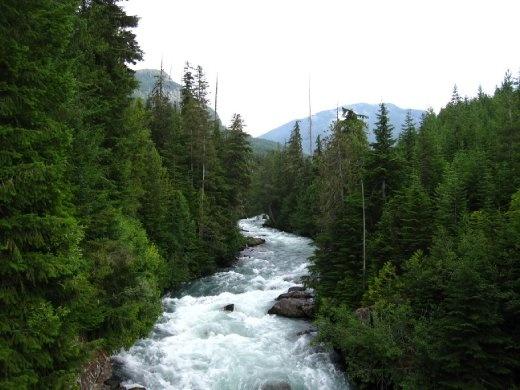 Hiking around Whistler Creek, BC