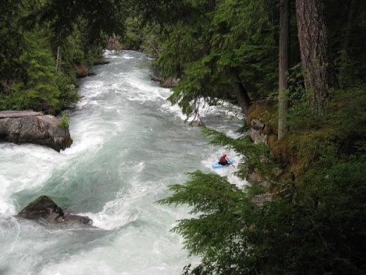 Kayakers in the creek