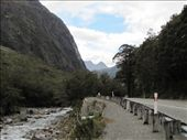 road to Milford Sound: by mikeh, Views[52]