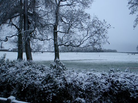 Littleton, Co. Tipperary. Snow was falling all morning.