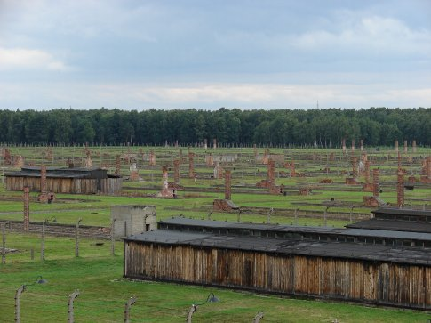 Auschwitz II (Birkenau). This is about 1/3 of the camp that remains. This is where the wooden barracks were.