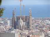 The Sagrada Familia from a look out point in Park Guell. It dwarfs everything else in the city.: by milko_rosie, Views[158]