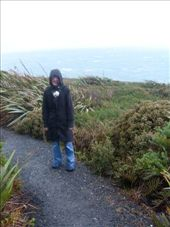 bluff, end of NZ: by milou, Views[216]