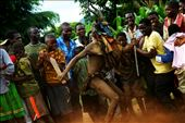 The Nhau is a dance of Tete in the north of Mozambique, UNESCO world heritage: by mindfullens, Views[253]