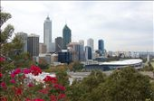 View over Perth from Kings Park: by misch, Views[611]