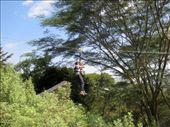 by miss_tanzania, Views[181]