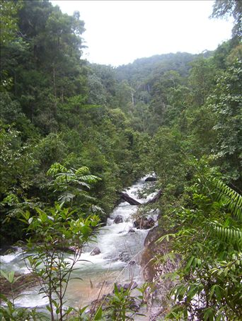 Phang-Na, Thailand. I went white water rafting in this area.