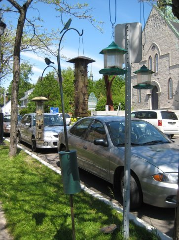 Interesting birdfeeders. Several times now in various cities, I've seen bird feeders hung on random public trees.