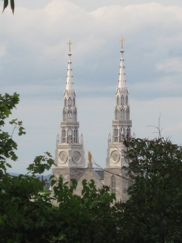 Pretty, but I have no idea what they are. Church spires?